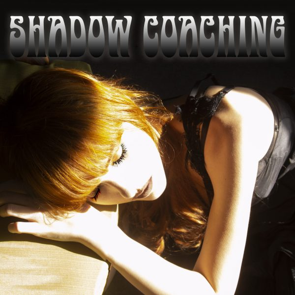 Shadow Coaching